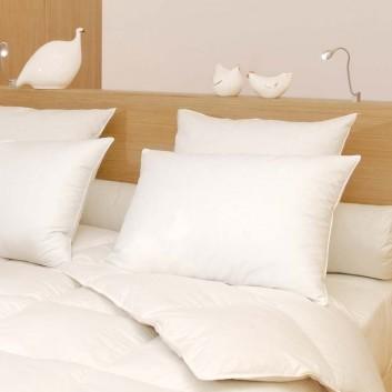 oreiller plume d 39 oie coin. Black Bedroom Furniture Sets. Home Design Ideas
