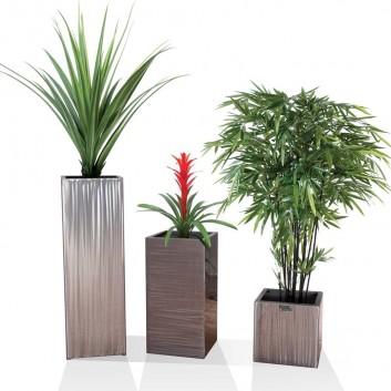 d coration plantes design coin. Black Bedroom Furniture Sets. Home Design Ideas