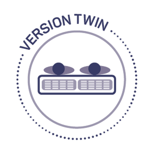 duvivier version twin logo